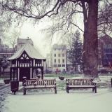 Where to enjoy the snow inLondon